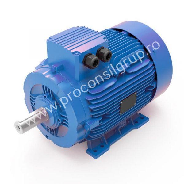 Motor electric trifazat standard - Proconsil Grup Iasi